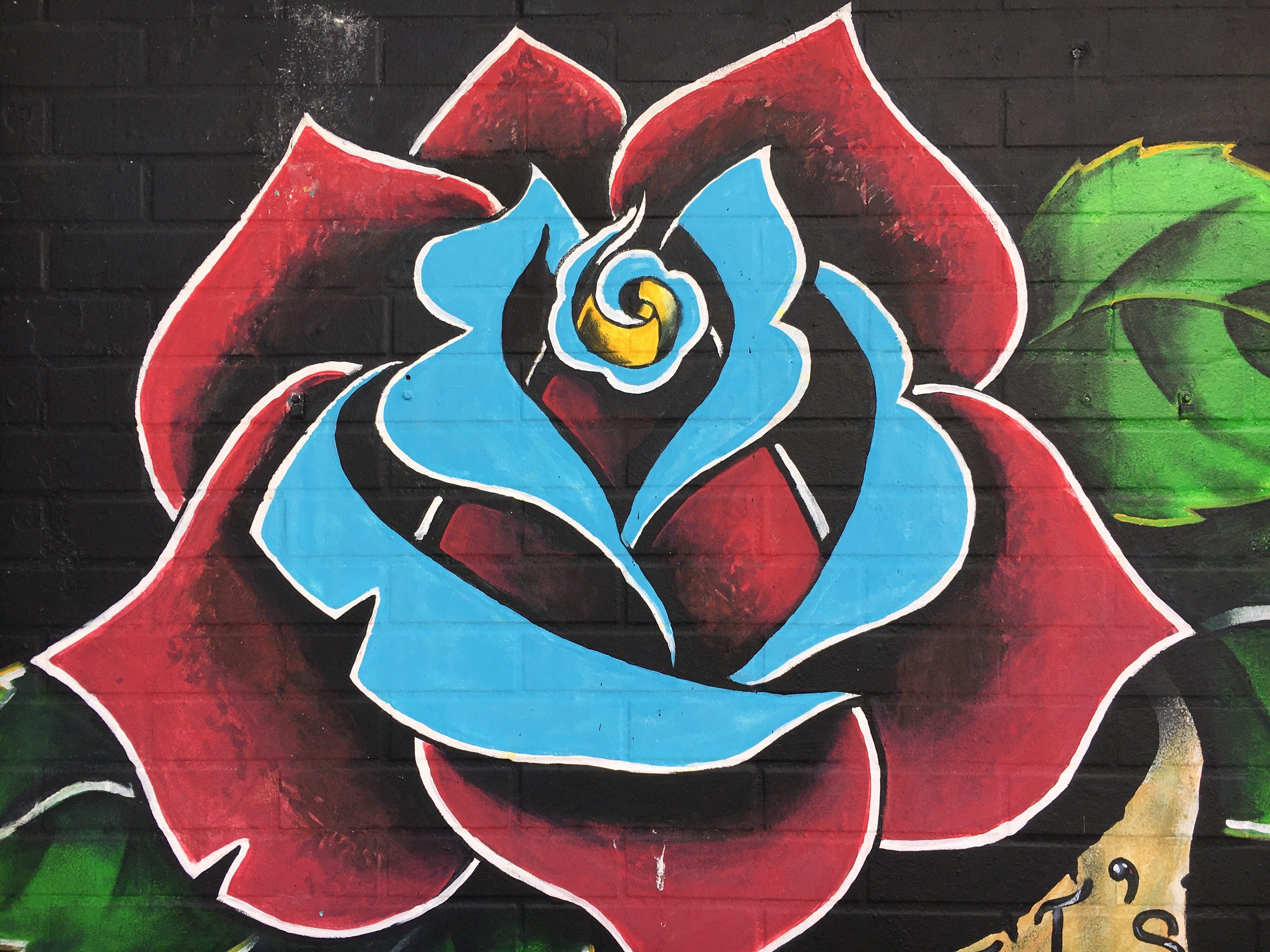 graffiti in San Juan streets