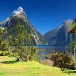 Why you Need to Visit New Zealand in This Lifetime